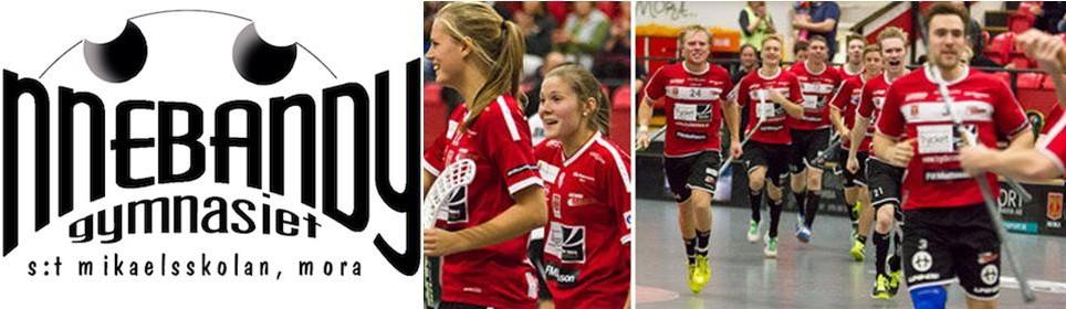 talent_wechselt_nach_schweden