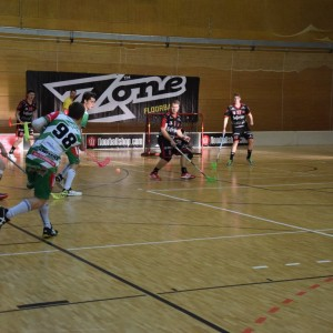 DHfK Floorball vs. Wernigerode 2