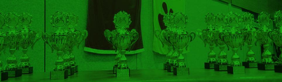 Jugend und Oldies beim Devils Cup erfolgreich